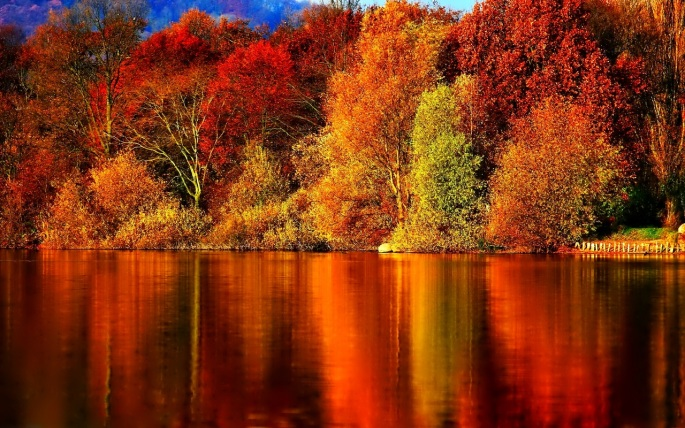 Autumn-Wallpaper-autumn.jpg
